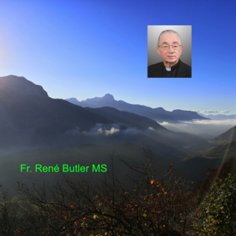 Fr. René Butler MS - Trinity Sunday - Have you...